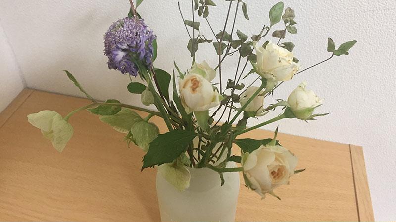 ブルーミーライフ6月分のお花