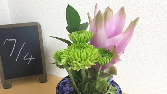 2020年7月分のお花!ライフルフラワーの定期便